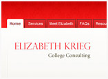 Web Design for College Consulting