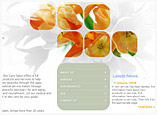 Web and Graphic Design for Skin Spa Salon